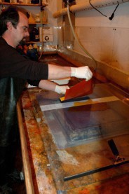 The sensitized tissue is applied to plexi-glass
